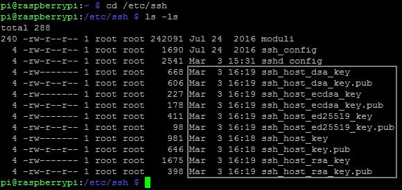 Raspbian SSH-Host Schlüsseldateien